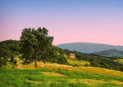 Terra e paesaggio